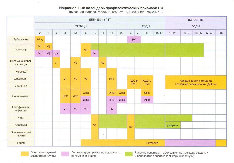 Нацилнальный календарь прививок в Российской Федерации